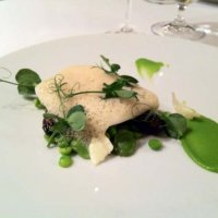 Braised fillet of brill with wild leaf garlic pannacotta, peas, feves and morels
