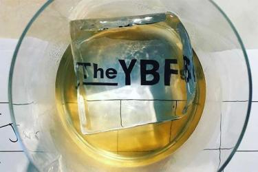 Here are all the winners from the 2018 YBFs