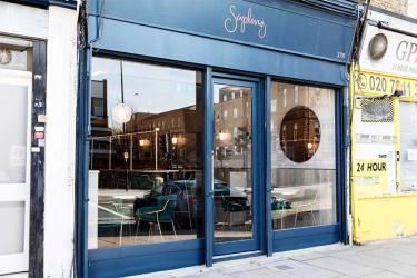 Sapling on Dalston's Kingsland Road is a wine-driven neighbourhood restaurant and bar
