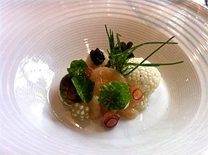 Sydney's top chefs cook up a storm at The Ledbury
