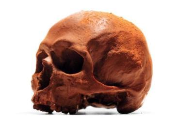 Chocolate skulls on sale for Halloween at Selfridges